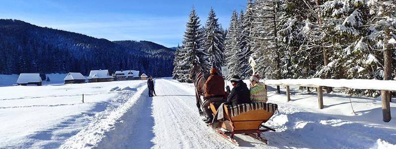 sleigh ride in the Chocholowska Valley
